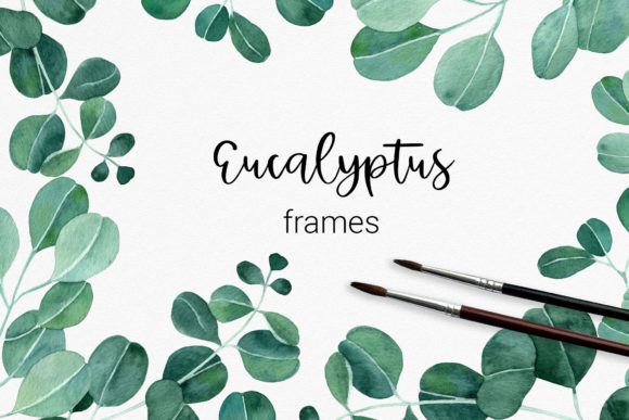 Set of Watercolor Eucalyptus Frames Graphic Illustrations By RedDotsHouse