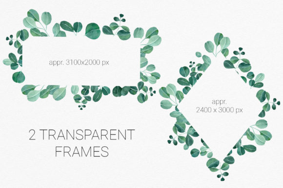Download Free Set Of Watercolor Eucalyptus Frames Graphic By Reddotshouse for Cricut Explore, Silhouette and other cutting machines.