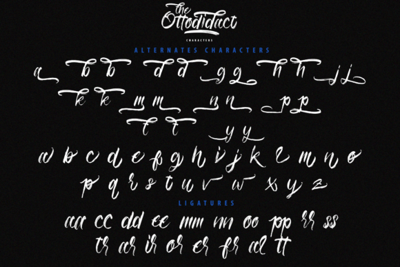 The Ottodidact Font Design Item