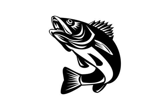 Download Download Fly Fishing Trout Svg Free Svg Cut Files For Commercial Use