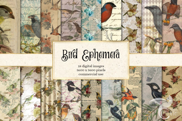 Print on Demand: Bird Ephemera Digital Paper Graphic Backgrounds By Digital Curio