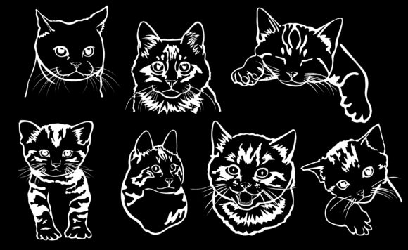 Download Free Cute Cat Face With White Line Art Style Graphic By Arief Sapta for Cricut Explore, Silhouette and other cutting machines.