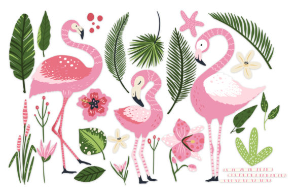 Print on Demand: Flamingo - Big Summer Collection Graphic Illustrations By Red Ink - Image 9