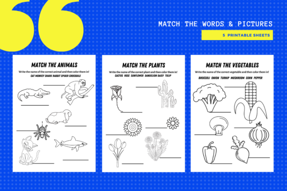 Print on Demand: Match the Words to Pictures Package X 5 Graphic Teaching Materials By MarinovaDesigns