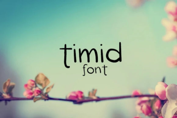 Print on Demand: Timid Display Font By carina2