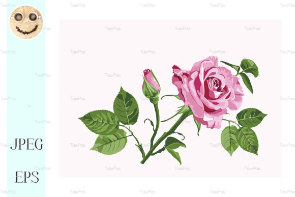 Download Free Vector Greeting Card With Pink Roses Graphic By Tasipas for Cricut Explore, Silhouette and other cutting machines.