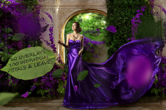 Purple Petals & Leaves Overlays Graphic Nature By FaeryDesign