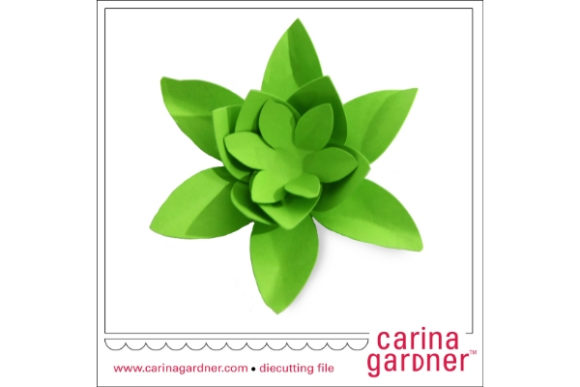 Download Free Small Succulent Graphic By Carina2 Creative Fabrica for Cricut Explore, Silhouette and other cutting machines.