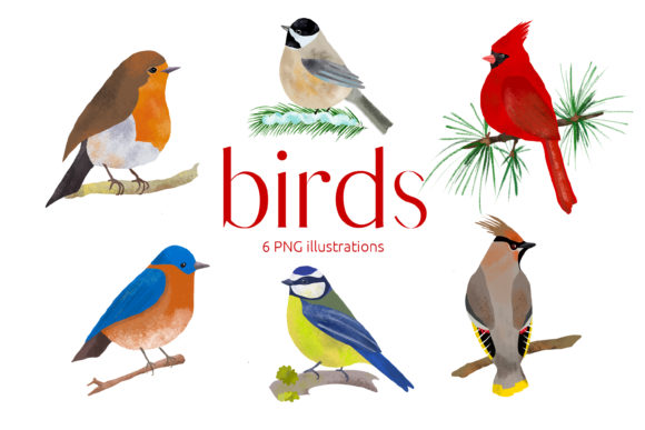 Print on Demand: Birds Illustration Clip Art  Gráfico Ilustraciones Por Primafox Design
