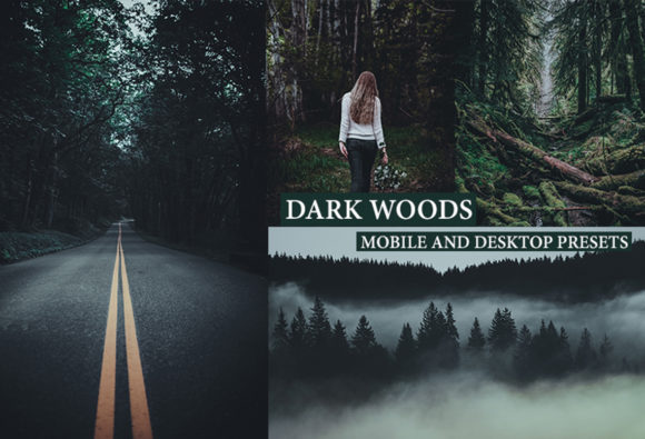 Cinematic Dark Woods Lightroom Presets Graphic Actions & Presets By Thiago Vibesp Creative
