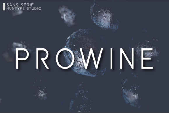Print on Demand: Prowine Sans Serif Font By Huntype