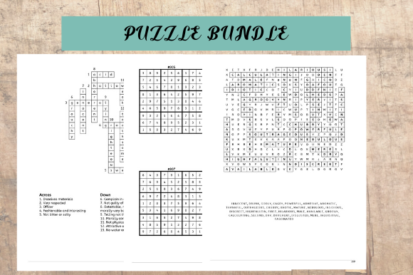Print on Demand: Puzzle Bundle for Kids and Adults Graphic KDP Interiors By EndlessGraphical