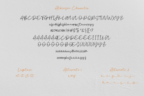 Print on Demand: Atkinson Script & Handwritten Font By Vz_Type - Image 8