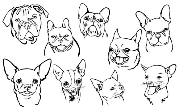 Download Free Dog Line Art Bulldog And Chihuahua Graphic By Arief Sapta for Cricut Explore, Silhouette and other cutting machines.