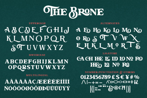 Print on Demand: The Brone Serif Font By Ngene - Image 10