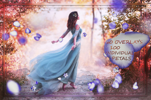 Violet Petals & Flowers Overlays Graphic Nature By FaeryDesign