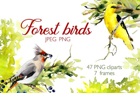 Download Free Watercolor Forest Bird Frames Graphic By Mariya Kutuzova for Cricut Explore, Silhouette and other cutting machines.