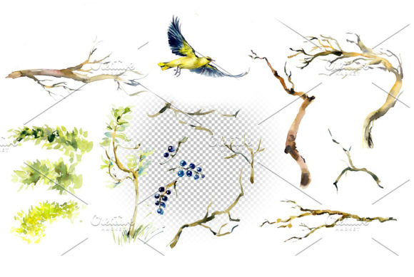 Watercolor Forest Bird Frames Graphic Illustrations By Мария Кутузова - Image 3