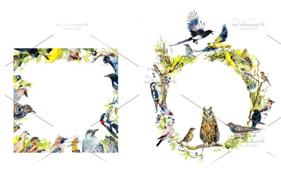 Watercolor Forest Bird Frames Graphic Illustrations By Мария Кутузова - Image 6