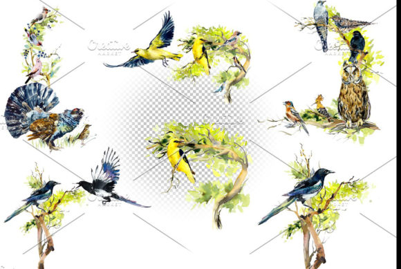 Watercolor Forest Bird Frames Graphic Illustrations By Мария Кутузова - Image 8