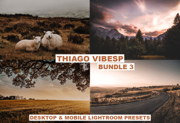 Download Free 26 Cinematic Bundle Lightroom Presets Graphic By Thiago Vibesp for Cricut Explore, Silhouette and other cutting machines.