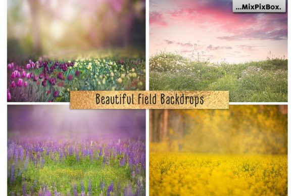 Print on Demand: Beautiful Field Backdrops Graphic Layer Styles By MixPixBox