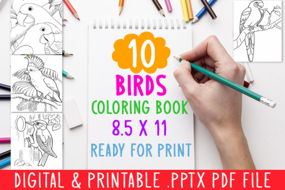 Print on Demand: 10 Birds Coloring Book for Kids Graphic Graphic Coloring Pages & Books Kids By DesignsBundles