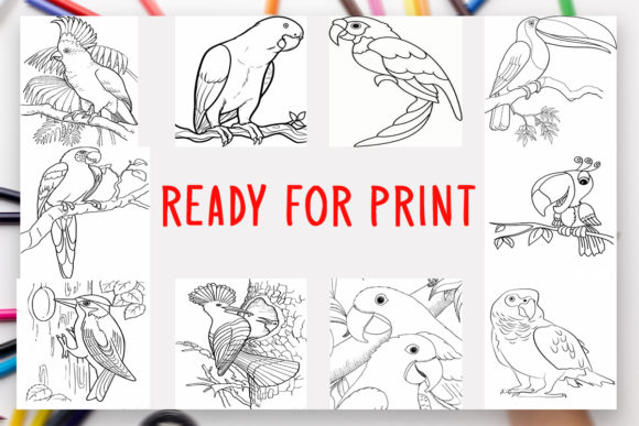 - 10 Birds Coloring Book For Kids Graphic (Graphic) By DesignsBundles ·  Creative Fabrica