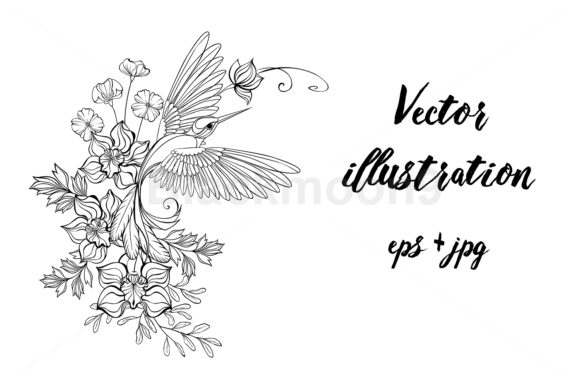 Contour Hummingbird with Orchids Graphic Illustrations By Blackmoon9