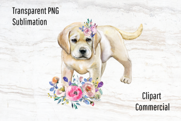 Print on Demand: Lab Puppy Sublimation Design Watercolor Graphic Illustrations By Blueberry Jam Design