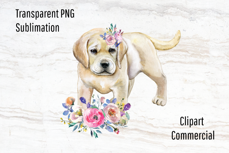 Download Free Lab Puppy Sublimation Design Watercolor Graphic By Blueberry Jam for Cricut Explore, Silhouette and other cutting machines.