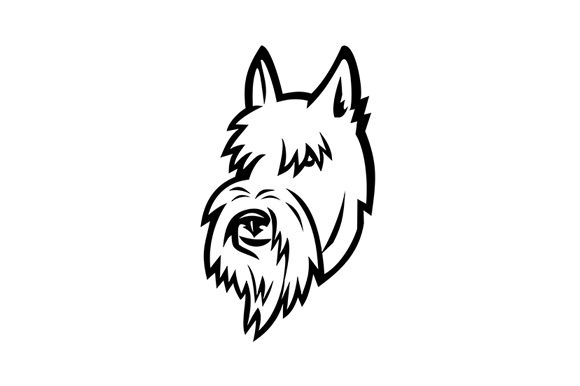 Download Free Scottish Terrier Head Mascot Graphic By Patrimonio Creative for Cricut Explore, Silhouette and other cutting machines.