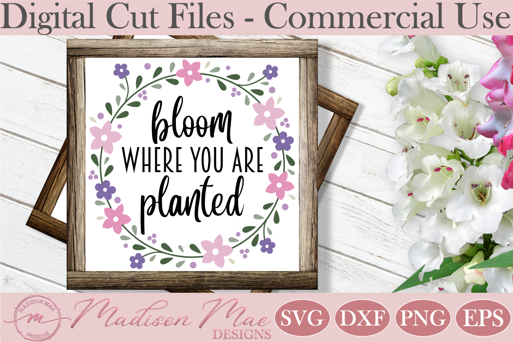 Spring Bloom Where You Are Planted Graphic By Madison Mae