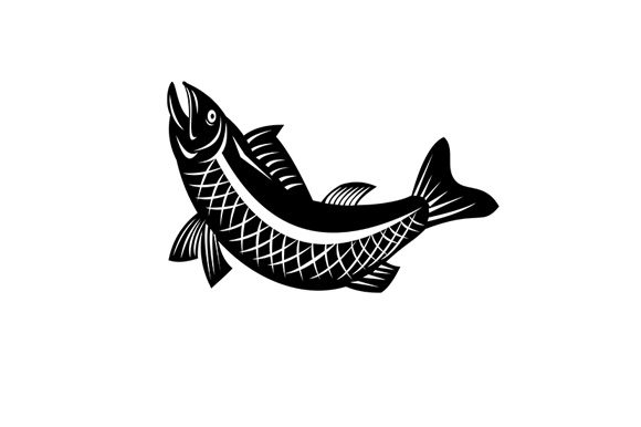 Download Free Trout Fish Jumping Side View Retro Graphic By Patrimonio for Cricut Explore, Silhouette and other cutting machines.