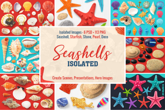 Isolated Seashells & Stones Graphic Objects By pixaroma