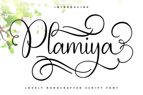 Print on Demand: Plamiya Script & Handwritten Font By Vunira