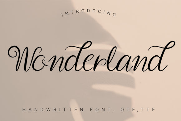 Print on Demand: Wonderland Script & Handwritten Font By artdee2554