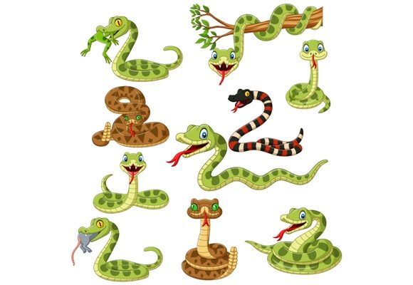 Cute Snakes Cartoon Graphic Illustrations By tigatelusiji