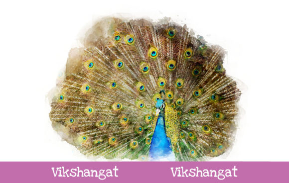 Print on Demand: Peacock Watercolor Art Graphic Illustrations By vikshangat