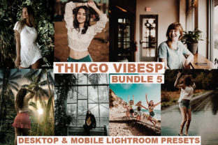 20 Cinematic Desktop & Mobile Lightroom Graphic Actions & Presets By Visual Filters