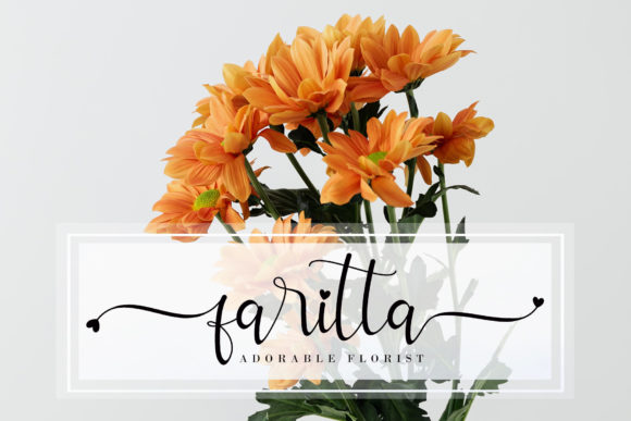 Allitta Font Popular Design