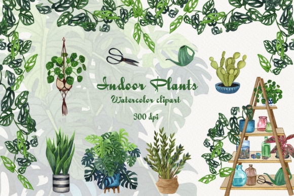 Indoor Plants Watercolor Clip Art Graphic Illustrations By BarvArt