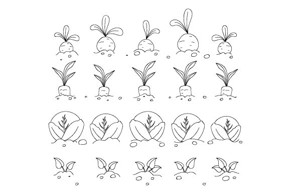 Vegetable Garden Coloring Page Kids Craft Cut File By Creative Fabrica Crafts
