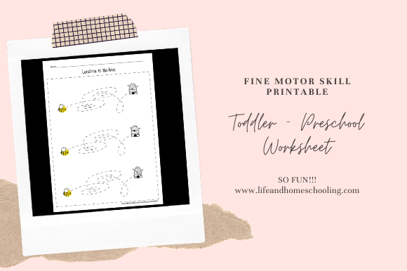 Download Free Fine Motor Activity Worksheets Graphic By Lifeandhomeschooling for Cricut Explore, Silhouette and other cutting machines.