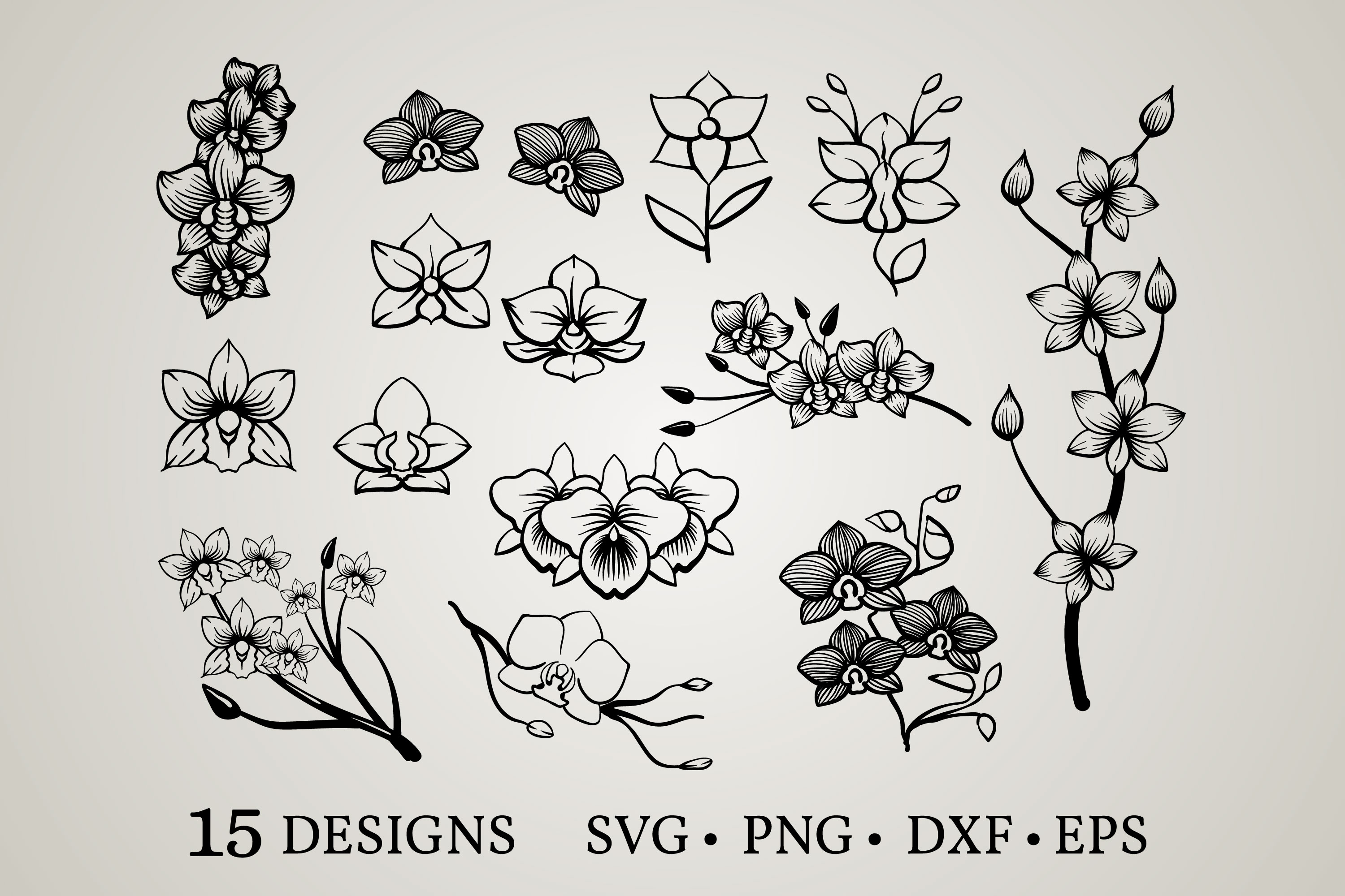 Download Free Orchid Bundle Graphic By Euphoria Design Creative Fabrica for Cricut Explore, Silhouette and other cutting machines.