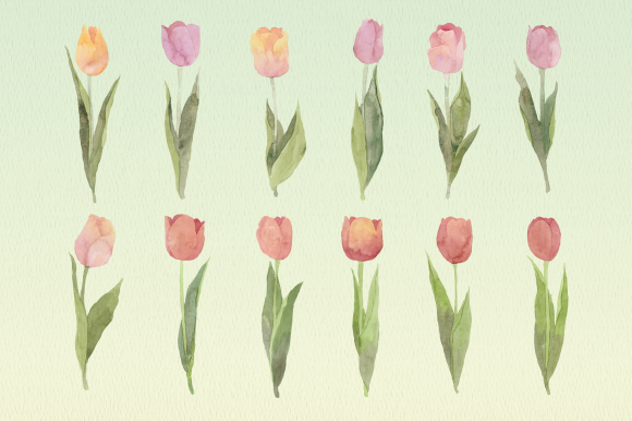 Download Free Pale Spring Tulips Watercolor Floral Set Graphic By Roselocket for Cricut Explore, Silhouette and other cutting machines.