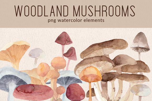 Print on Demand: Woodland Forest Mushrooms Watercolor Set Graphic Illustrations By roselocket