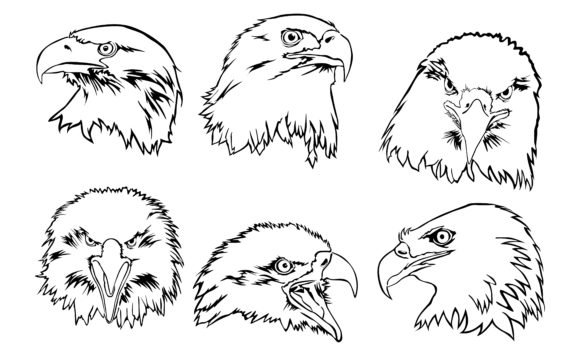 Print on Demand: Eagle with Line Art Style Bundle Graphic Crafts By Arief Sapta Adjie