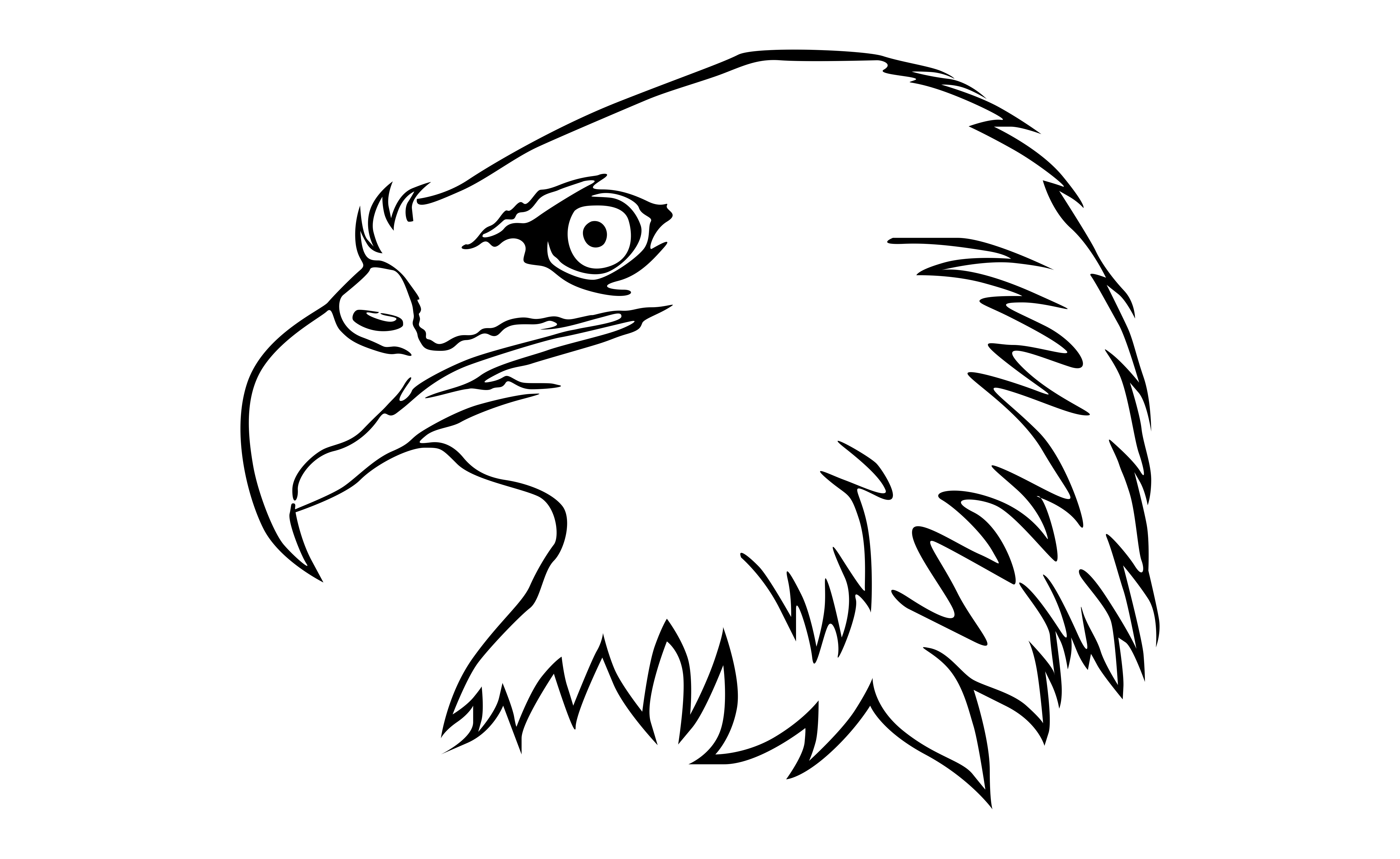 Download Free Eagle With Line Art Style Graphic By Arief Sapta Adjie SVG Cut Files