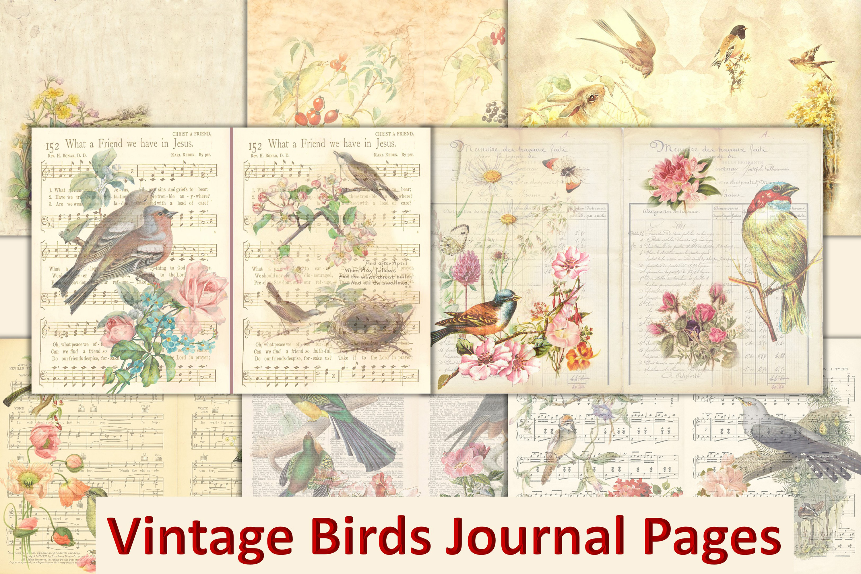Download Free Vintage Birds Background Pages Graphic By The Paper Princess Creative Fabrica for Cricut Explore, Silhouette and other cutting machines.
